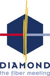 Logo DIAMOND GmbH